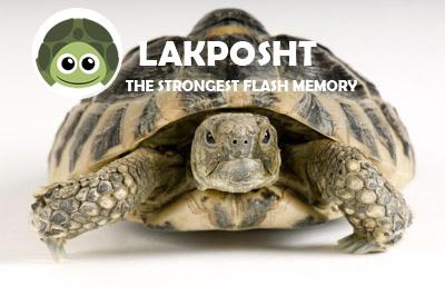 نرم افزار لاکپشت,لاکپشت,نرم افزار Lakposht,